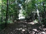 14 Junebug Trail - Photo 9