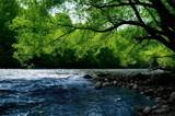 1377 River Club Ridge - Photo 27
