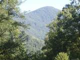 110 & 116 Tenderfoot Trail - Photo 2