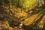0 Whispering Hills Lane - Photo 16