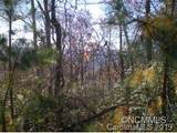 M21 Elk Mountain Trail - Photo 2