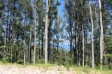 1353 Daydream Ridge - Photo 10