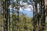 1353 Daydream Ridge - Photo 11