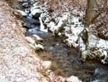 00 Yellow Creek Road - Photo 15