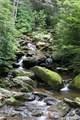 2 Oak Ridge Trail - Photo 14