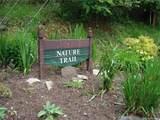 345 Birch Springs Lane - Photo 9
