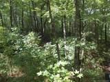 Lot 13 Fox Ridge Trail - Photo 11
