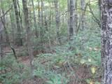 Lot 13 Fox Ridge Trail - Photo 8