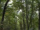 Lot 13 Fox Ridge Trail - Photo 9