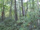 Lot 13 Fox Ridge Trail - Photo 10