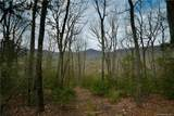 2 Wood Lily Trail - Photo 10