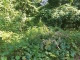 105 Ladys Fern Trail - Photo 4