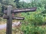 TBD Stoneway Drive - Photo 17