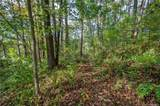 100 Sassafras Gap Road - Photo 14