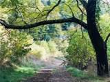 437 Plott Mountain Road - Photo 1