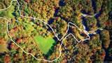 365 Hidden Hollow Falls Drive - Photo 1