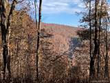 0 Camp Knob Road - Photo 3