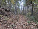 0 Camp Knob Road - Photo 6