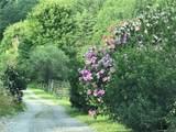 3758 Rush Branch, Shady Acres Lane Road - Photo 26