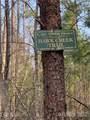 999 Mountain Parkway - Photo 9