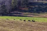 112 Saddle Ridge Drive - Photo 5