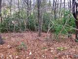 1036 Indian Cave Road - Photo 4