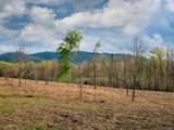 LOT 11 Turkey Ridge Road - Photo 15