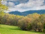 LOT 11 Turkey Ridge Road - Photo 3