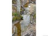 LOT 11 Turkey Ridge Road - Photo 22