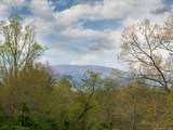 LOT 11 Turkey Ridge Road - Photo 28