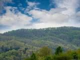 LOT 11 Turkey Ridge Road - Photo 38