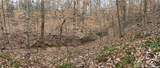 000 Vesuvius Furnace Road - Photo 14