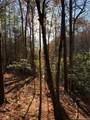 168 Big Tree Way - Photo 1
