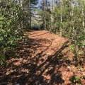 950 Green Hill Road - Photo 7