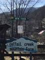137 Mountain Farm Road - Photo 4