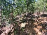 0 Arbra Mountain Way - Photo 4