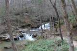 24.17 acres Walnut Falls Lane - Photo 43