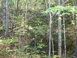 Lots 35 & 38 Hemlock Falls Road - Photo 11