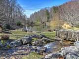 35 Ginseng Trail - Photo 44