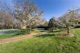 14208 Bald Cypress Court - Photo 41