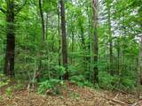 309 Acres Mountainbrook Road - Photo 20