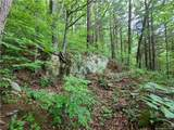 309 Acres Mountainbrook Road - Photo 21