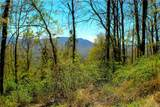 309 Acres Mountainbrook Road - Photo 4