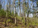 309 Acres Mountainbrook Road - Photo 44