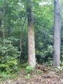 18.54 Acres Scout Camp Road - Photo 4