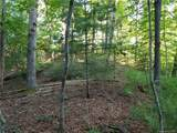 18.54 Acres Scout Camp Road - Photo 31