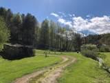 1405 Hortons Creek Road - Photo 5