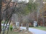229 Bearwallow Road - Photo 8