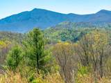 550 Hemlock Ridge Bend - Photo 10