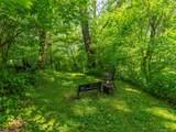 104 Wilderness Trail - Photo 9